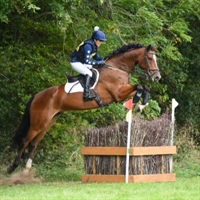 Sapey British Eventing ODE